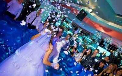 Ведущая - на Свадьбу оказываем услуги